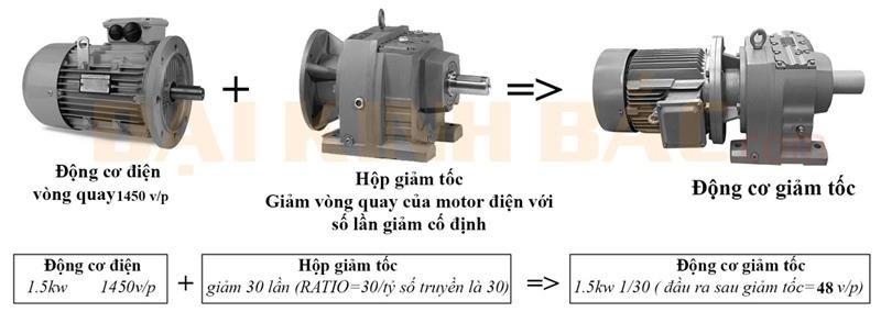 Cấu tạo motor giảm tốc Wanshsin