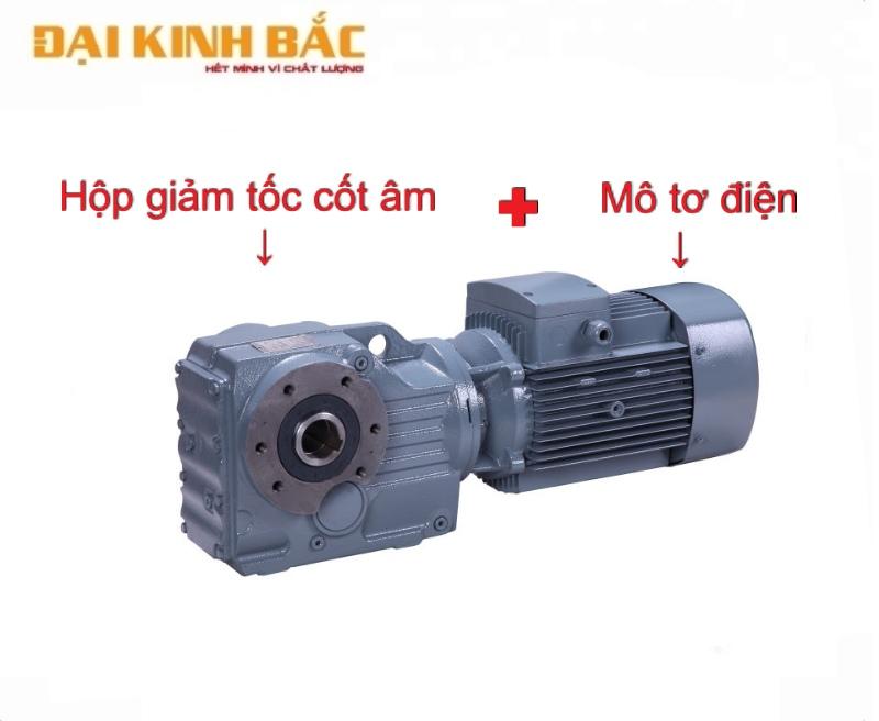 Cấu tạo motor giảm tốc cốt âm