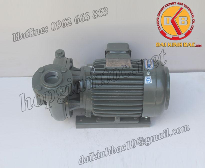 Bơm nước Teco G-32-65-2P-2HP-1.5KW
