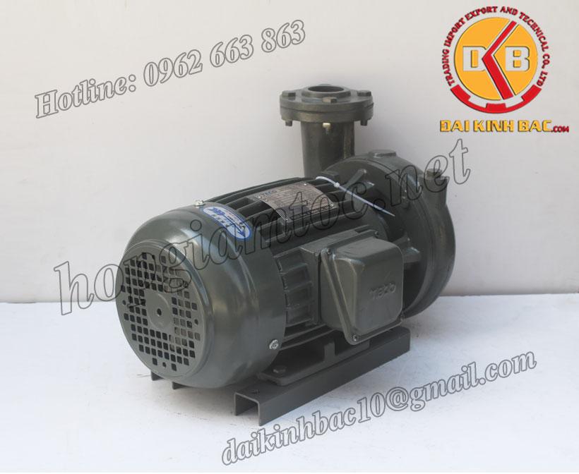 Bơm nước Teco G-35-65-2P-5HP-3.7KW