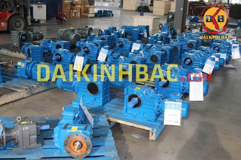 gear motor r series Đại Kinh Bắc