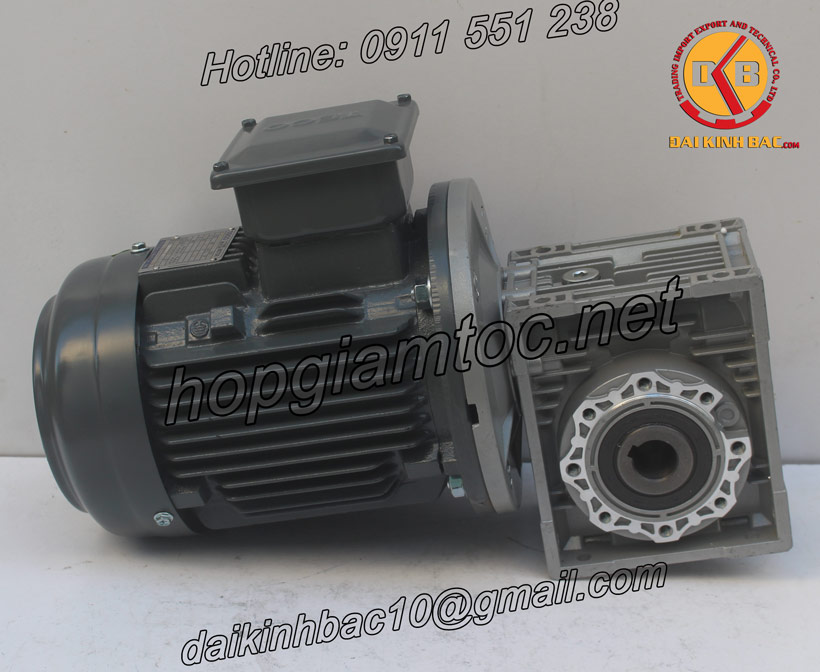 Hinh-anh-hop-giam-toc-MCN-TNR-40