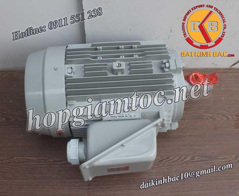 Motor điện Toshiba chân đế 22