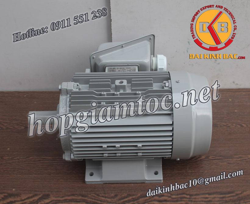 Motor điện chân đế Toshiba 2.2kw