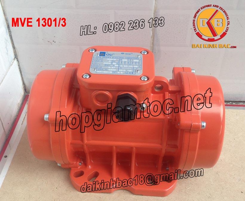motor-rung-oli-MVE-1301-3