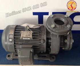 BƠM NƯỚC TECO G-3100-250 4P 100HP 75KW