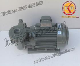 BƠM NƯỚC TECO G-310-80 2P 10HP 7.5KW
