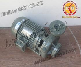 BƠM NƯỚC TECO G-310-80 4P 10HP 7.5KW