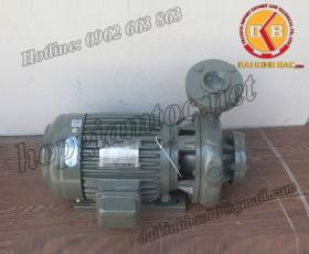 BƠM NƯỚC TECO G-320-150 4P 20HP 15KW