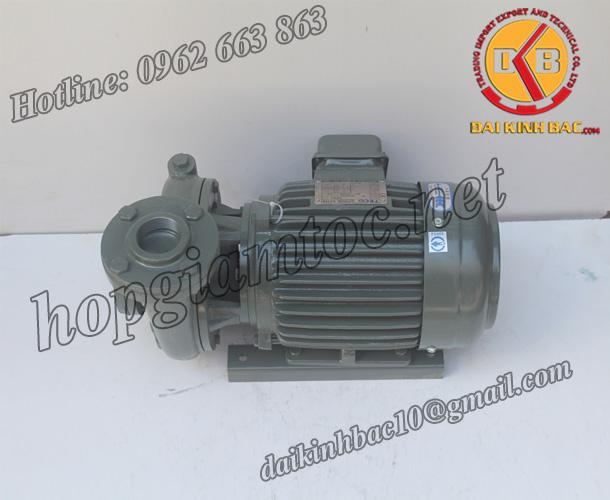 BƠM NƯỚC TECO G-32-50 2P 2HP 1.5KW