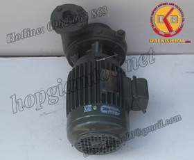 BƠM NƯỚC TECO G-325-100 2P 25HP 18.5KW