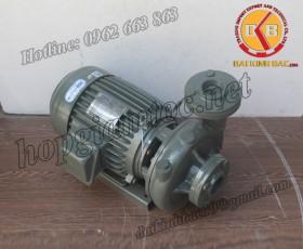 BƠM NƯỚC TECO G-325-150 4P 25HP 18.5KW