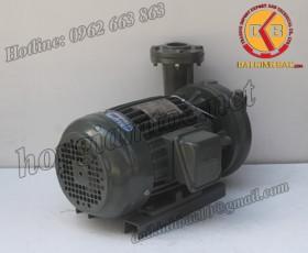 BƠM NƯỚC TECO G-325-250 4P 25HP 18.5KW