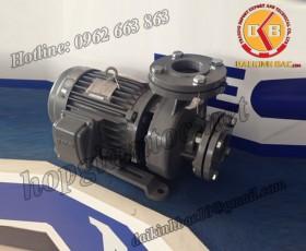 BƠM NƯỚC TECO G-330-100 2P 30HP 22KW
