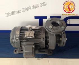 BƠM NƯỚC TECO G-330-150 4P 30HP 22KW(1)