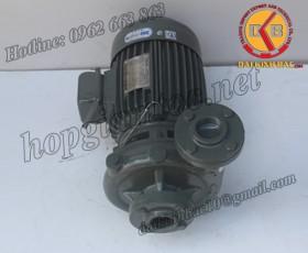 BƠM NƯỚC TECO G-330-250 4P 30HP 22KW