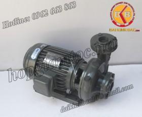 BƠM NƯỚC TECO G-33-65 2P 3HP 2.2KW