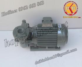 BƠM NƯỚC TECO G-340-150 2P 40HP 30KW
