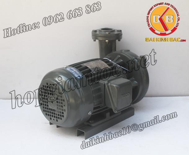 BƠM NƯỚC TECO G-35-65 2P 5HP 3.7KW