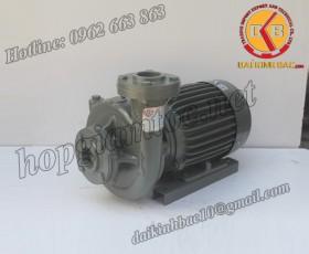 BƠM NƯỚC TECO G-35-80 2P 5HP 3.7KW