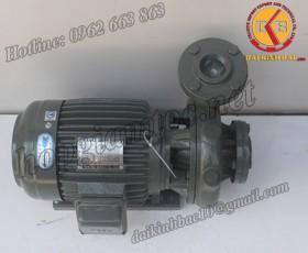 BƠM NƯỚC TECO G-360-250 4P 60HP 45KW(1)
