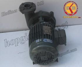 BƠM NƯỚC TECO G-360-250 4P 60HP 45KW