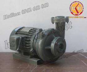 BƠM NƯỚC TECO G-360-300 4P 60HP 45KW