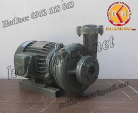 BƠM NƯỚC TECO G-37-80 4P 7.5HP 5.5KW