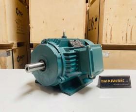 Động cơ điện 0.75kw 6 cực IE2 IE3