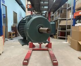 Động cơ điện 11 kw 15 hp 6 cực IE2, IE3