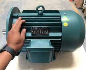 Động cơ điện 110 KW 150 HP
