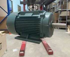 Động cơ điện 132 kw 180 hp