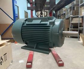 Động cơ điện 15kw 20hp