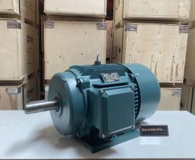 Động cơ điện 18.5kw 25hp 6 cực IE2, IE3