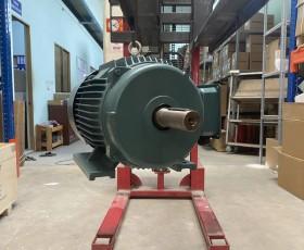 Động cơ điện 200 kw 270 hp