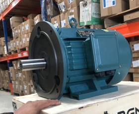 Động cơ điện 22 kw 30 hp 6 cực IE2, IE3