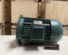 Động cơ điện 22kw 30hp