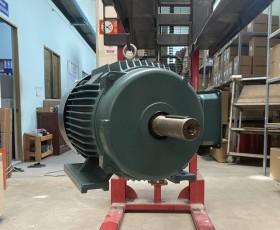 Động cơ điện 250 kw 340 hp
