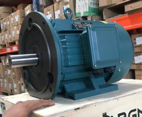 Động cơ điện 30 KW 40 HP 6 cực IE2, IE3