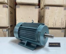 Động cơ điện 30kw 40hp
