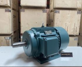 Động cơ điện 3KW 4HP 6 cực IE2, IE3