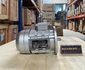 Động cơ điện 3pha 0.25kw 1/3hp