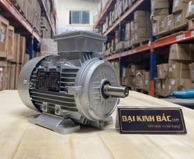 Động cơ điện 3pha 0.75kw 1hp
