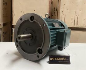 Động cơ điện 4kw 5.5hp 6 cực IE2, IE3
