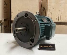 Động cơ điện 55 kw 75 hp