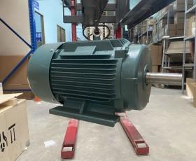 Động cơ điện 75kw 100hp