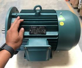 Động cơ điện 90 KW 125hp