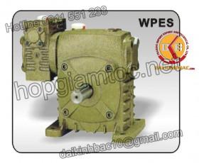 Hộp giảm tốc trục vít 2 cấp  WPES