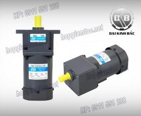 Induction motor 120w 5IK120GU-CF