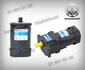Induction motor 90w 5IK90GU-CF